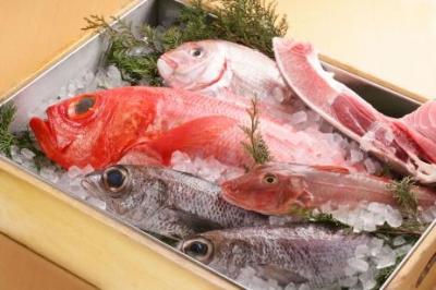 新鮮な魚介は産地から直送!魚の知識も身につきます