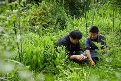 長野の食材を中心に、生産者直や自社農園、山の天然物などから目利きして仕入れます。