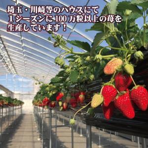 自社農園で栽培している苺を使って次なる看板メニューを!
