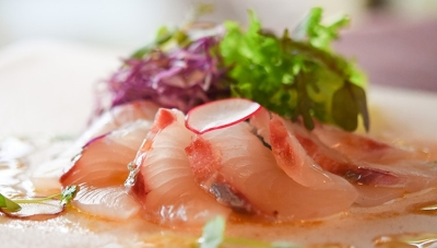 高知県宿毛の漁港から直送されるとれたての鮮魚を使用しています。