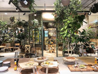 11月OPEN★緑あふれるカフェレストランでオープニングスタッフとして活躍しませんか!