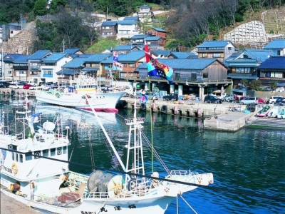 各地の漁港から新鮮な魚介類を毎日直送!