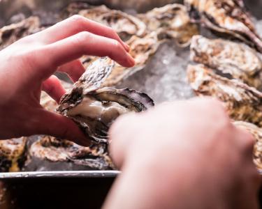 新宿御苑近くにある牡蠣料理専門店のカンタンな調理補助のオシゴト。