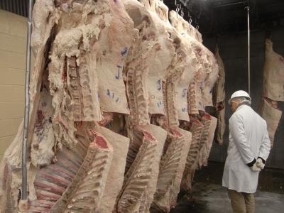 使用する牛肉は、契約農家から一頭買いした国産黒毛和牛にこだわっています。
