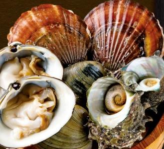 日本全国の市場や漁師さん達から届く新鮮な魚介類が自慢!