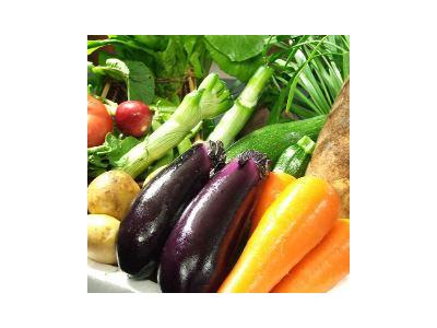 知多半島、三河湾の食材をふんだんに使用したお料理で好評いただいています