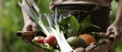 「自然食レストラン&ショップ」として、安心できる食材にこだわった自然食を提供しています。