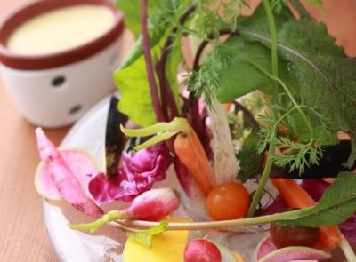 料理は地元野菜をふんだんにイタリアンを提供。