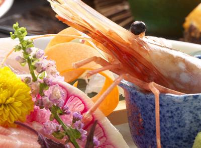 富山の食材をはじめ、全国の旬の食材も用いて珠玉の料理をご提供