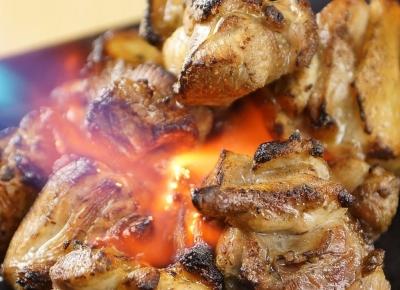 溶岩を使い、鶏肉や新鮮魚介を遠赤外線でじっくりと焼き上げた「溶岩焼き」が人気です!