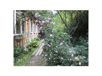 お店のまわりには、季節ごとに違った草花を眺めることができる庭園も。