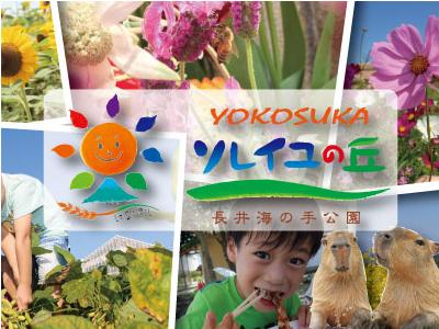 三浦半島の小高い丘にある体験型の公園が、活躍の舞台です!