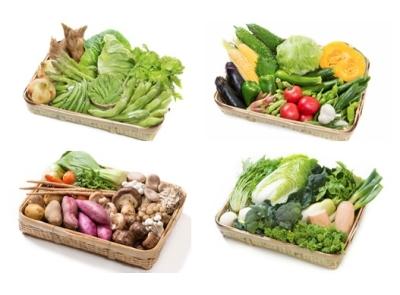 旬の食材を活かした、四季折々の料理も私たちの自慢です。