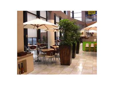 開放感あふれるイタリアンレストランで、ホールスタッフを募集します。