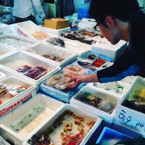 食材は毎日、中央市場や東部卸売市場で仕入れます。食材の目利きが身に付き、将来お店を持つ時役立ちます