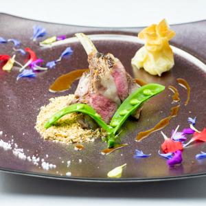 6月に銀座エリアでオープンするイタリアンで料理長候補として活躍!