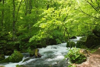 大浴場や、周辺の自然も大いにお楽しみください!