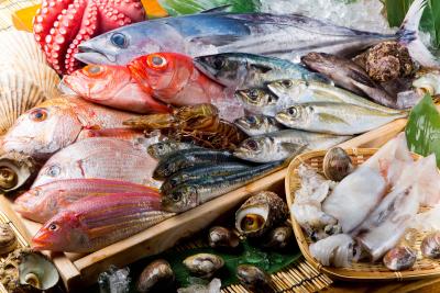 新店は青魚を中心とした青魚専門店。新鮮なサバやアジ、サンマを一番美味しい形で提供します!