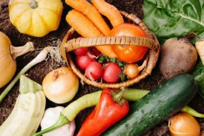 JR三ノ宮から徒歩3分と便利な立地も魅力。旬の野菜をたっぷり楽しめる野菜割烹で調理スタッフを募集!