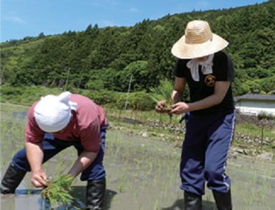 農家に出向いて農作業を楽しむ社員もいます。
