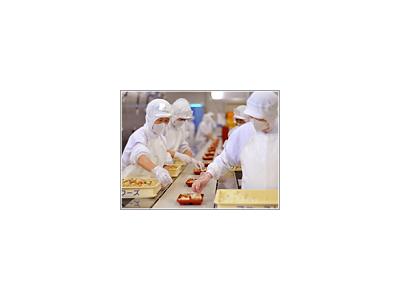 企業さま向けに1日1万食以上のお弁当を製造しています