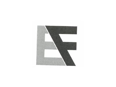 株式会社EFFOrT