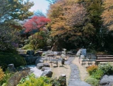 四季折々の園庭をお楽しみいただいております。