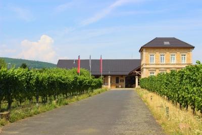 歴史あるワイン醸造所に住んで、現地グルメに和食文化をアピール。