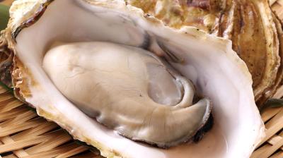草津や倉橋など広島の漁港から直送られる牡蠣を扱います!