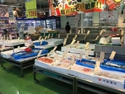 プロユースのスーパー・鮮魚部門にて、ご活躍ください!