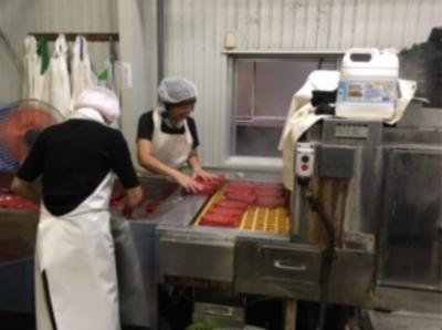 食品製造工場にて、お弁当の盛り付けをするお仕事♪コツコツ・モクモク作業だから未経験でも安心◎