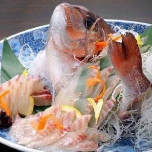 漁港直送で新鮮な魚介類を提供しています。