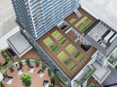 低層棟屋上には農園も!