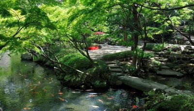 池を囲む回遊式の1万2000坪の庭園に囲まれた四季を楽しめるロケーション。