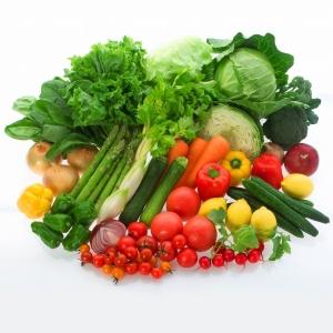 未経験者歓迎!旬の野菜や果物に関する知識が身につく仕事です。