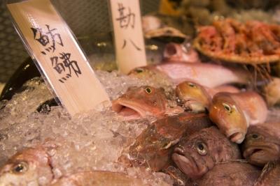 全国から取り寄せた新鮮な魚介類が人気のお店です!